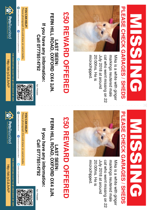 Lost pet flyers - Lost cat: White with ginger markings cat called Mika