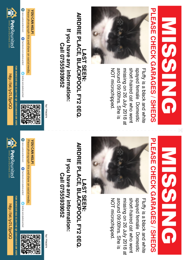 Lost pet flyers - Lost cat: Black and white cat called Fluffy
