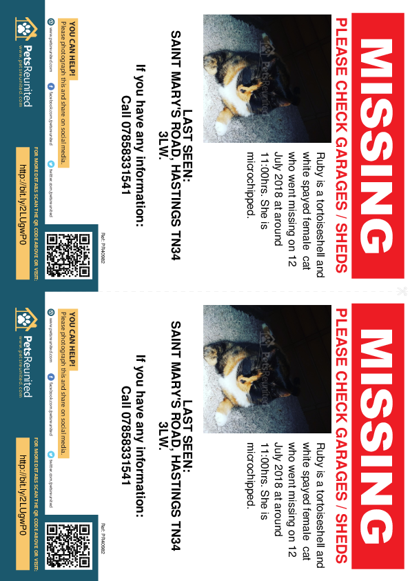Lost pet flyers - Lost cat: Tortoiseshell and white cat called Ruby