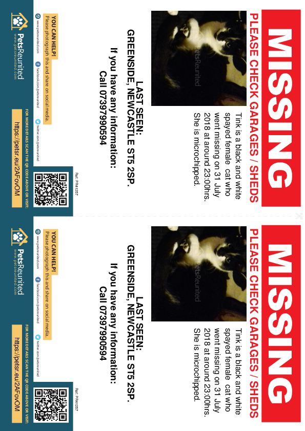 Lost pet flyers - Lost cat: Black and white cat called Tink