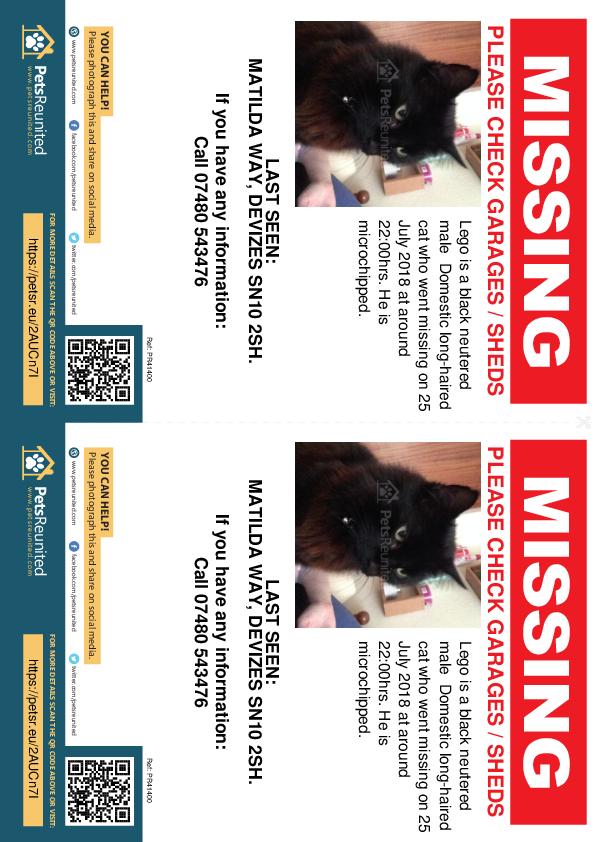 Lost pet flyers - Lost cat: Black cat called Lego