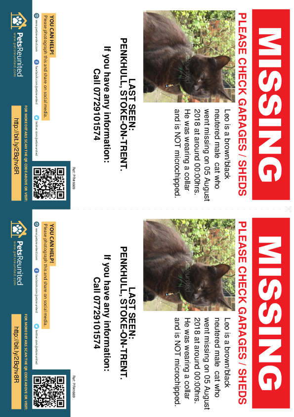 Lost pet flyers - Lost cat: brown/black cat called Leo