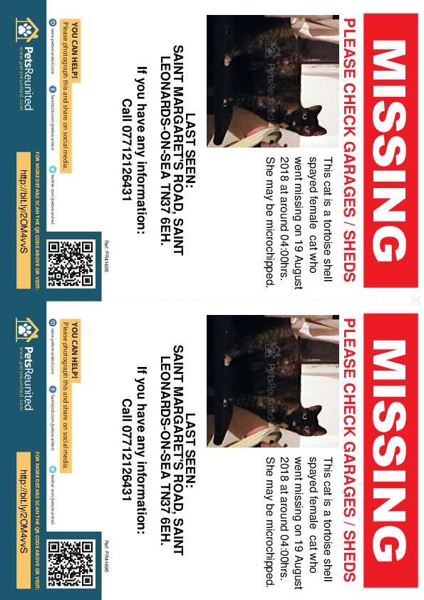 Lost pet flyers - Lost cat: Tortoise shell cat [name witheld]