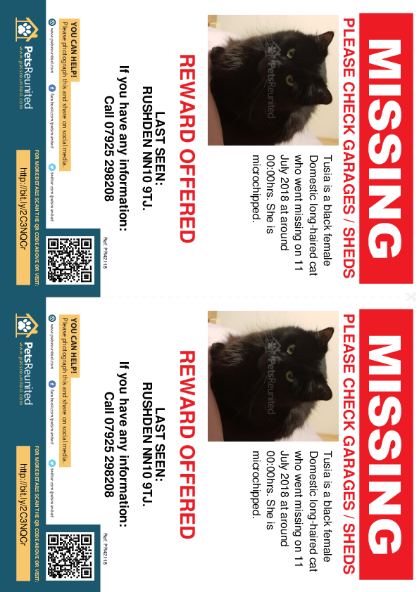 Lost pet flyers - Lost cat: Black cat called Tusia