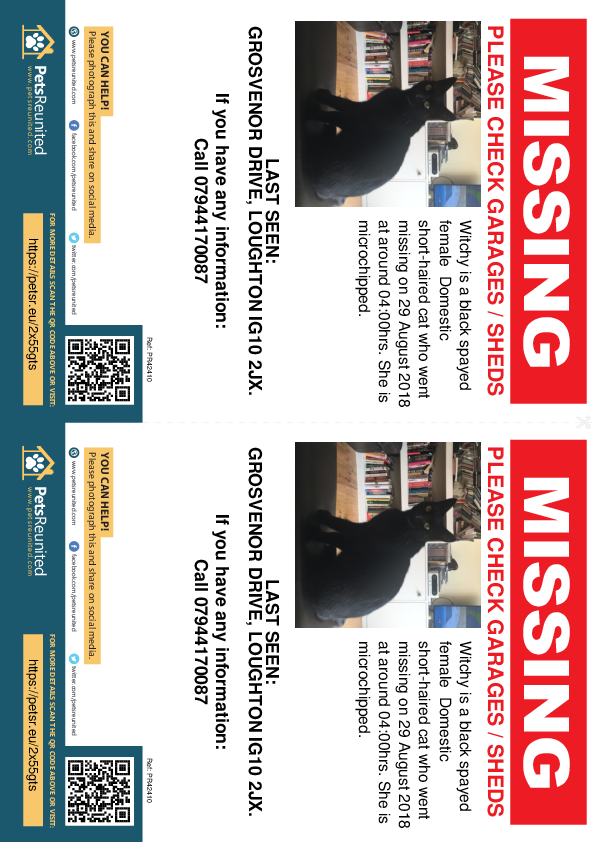 Lost pet flyers - Lost cat: Black cat called Witchy
