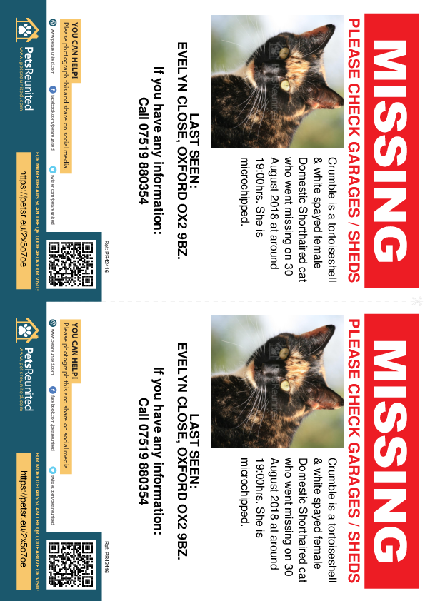 Lost pet flyers - Lost cat: Tortoiseshell  & white cat called Crumble