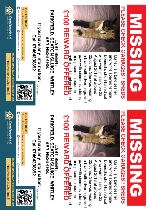 Lost pet flyers - Lost cat: Tortoiseshell and white cat called Marley