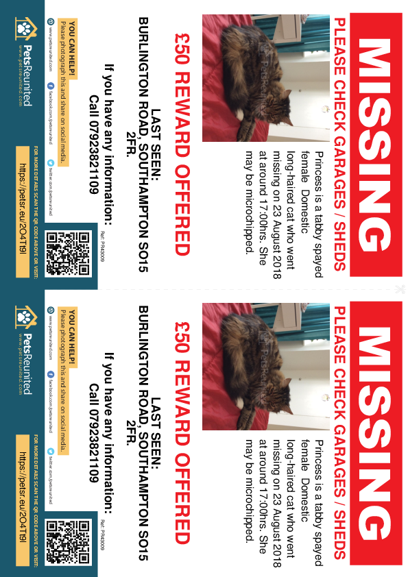Lost pet flyers - Lost cat: Tabby cat called Princess