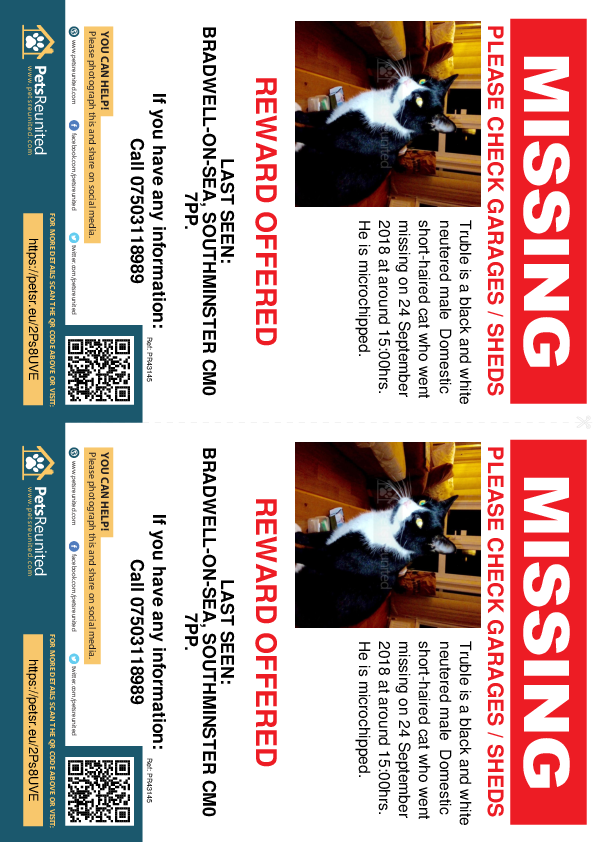 Lost pet flyers - Lost cat: Black and white cat called Truble