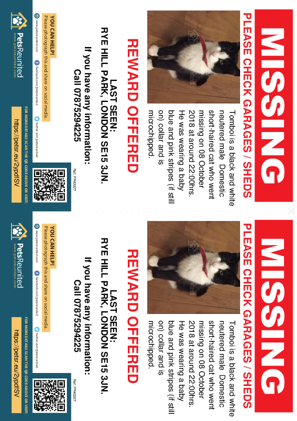 Lost pet flyers - Lost cat: Black and white cat called Tomboi
