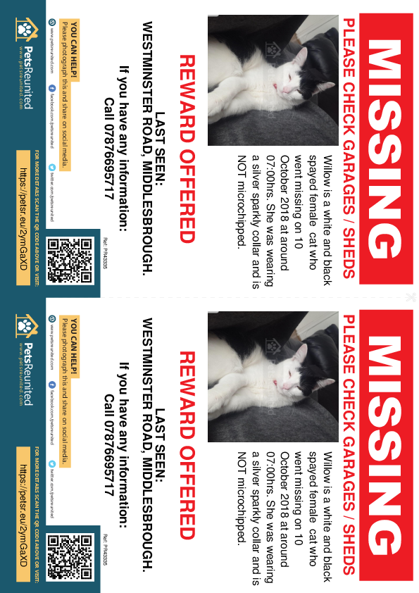Lost pet flyers - Lost cat: White and black cat called Willow