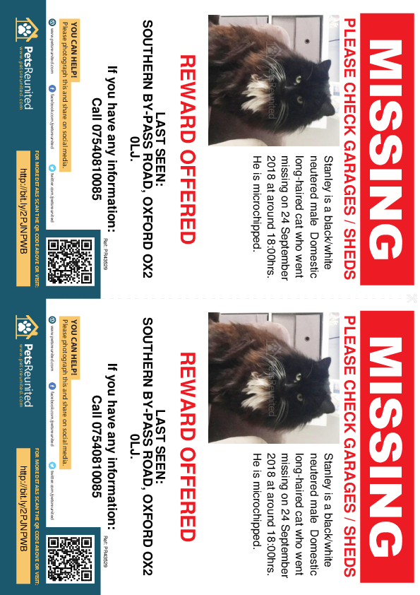 Lost pet flyers - Lost cat: Black/White cat called Stanley