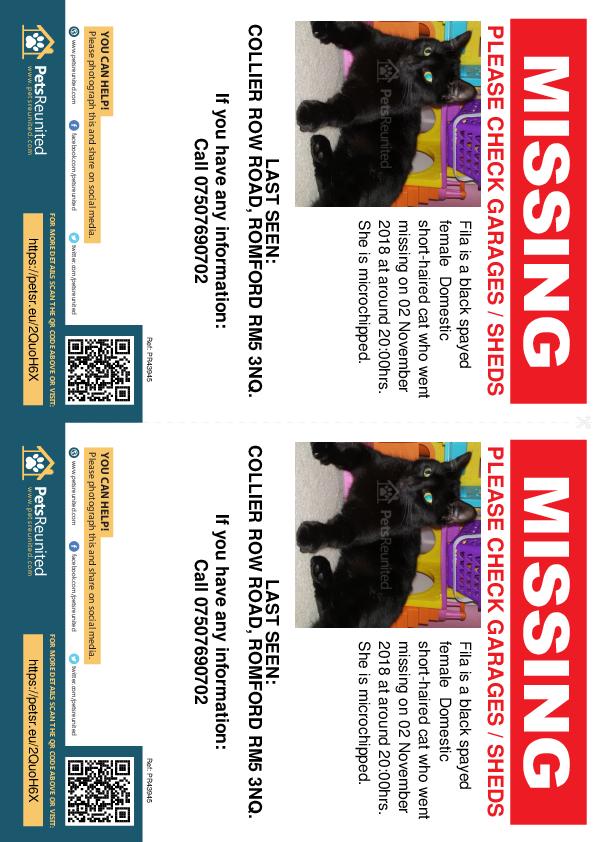 Lost pet flyers - Lost cat: Black cat called Fila