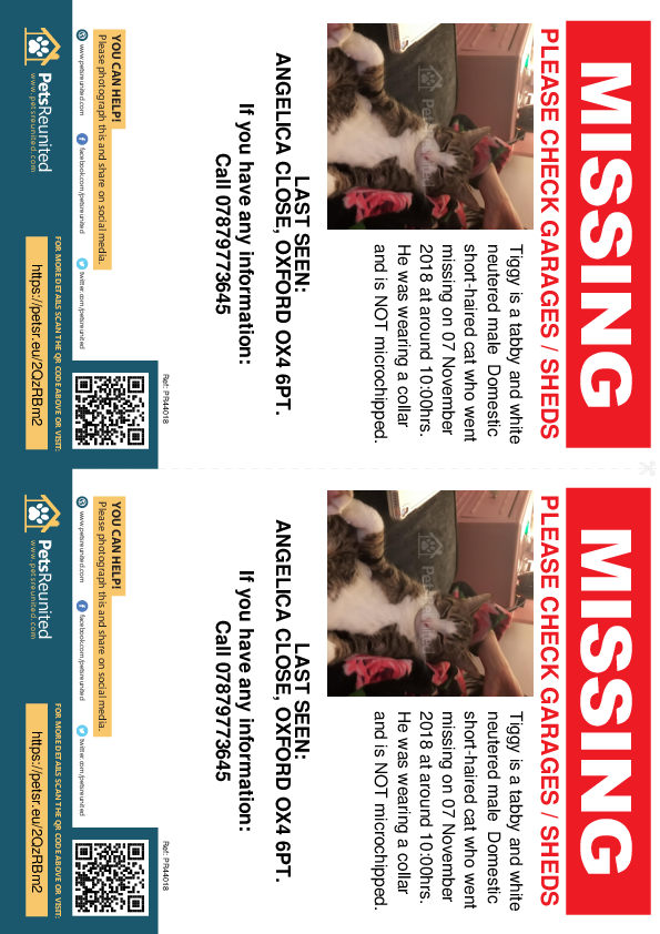 Lost pet flyers - Lost cat: Tabby and white cat called Tiggy