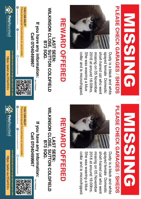 Lost pet flyers - Lost cat: Black and white cat called Dusty