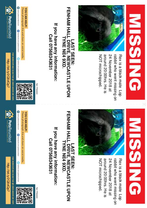 Lost pet flyers - Lost rabbit: Black Lop rabbit called Rex