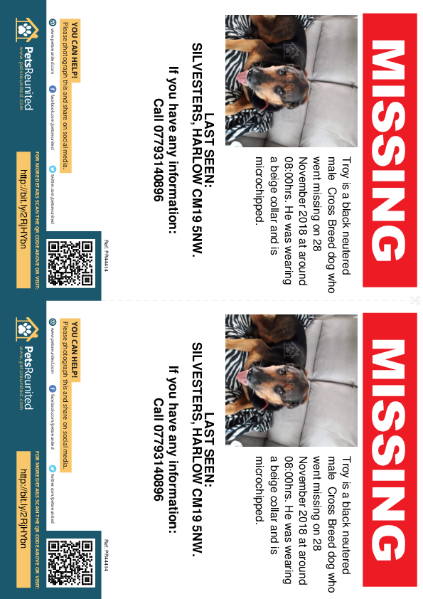 Lost pet flyers - Lost dog: Black dog called Troy