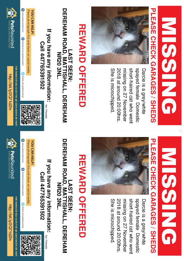 Lost cat: Grey/White cat called Darcie - Wymondham area