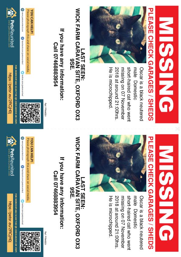 Lost pet flyers - Lost cat: Black cat called Oscar
