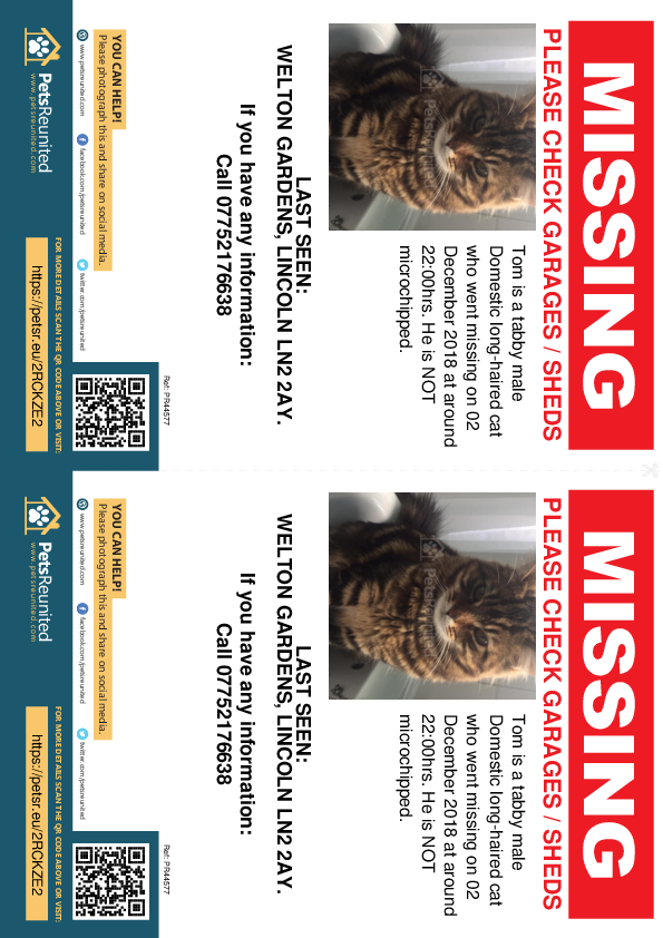 Lost pet flyers - Lost cat: Tabby cat called Tom