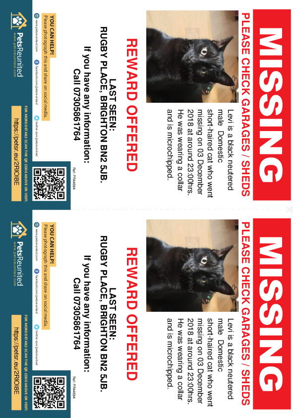 Lost pet flyers - Lost cat: Black cat called Levi