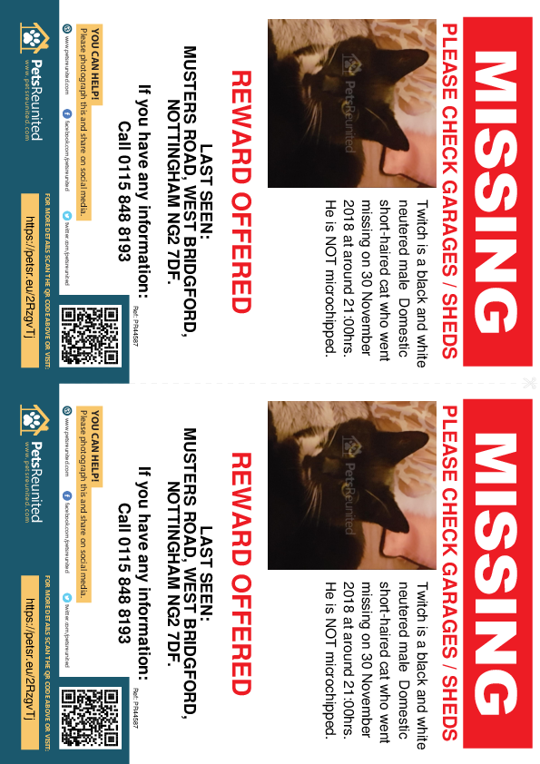 Lost pet flyers - Lost cat: Black and white cat called Twitch