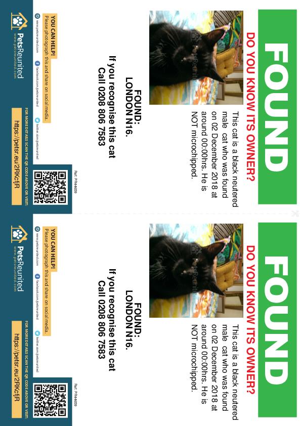 Found pet flyers - Found cat: Black cat