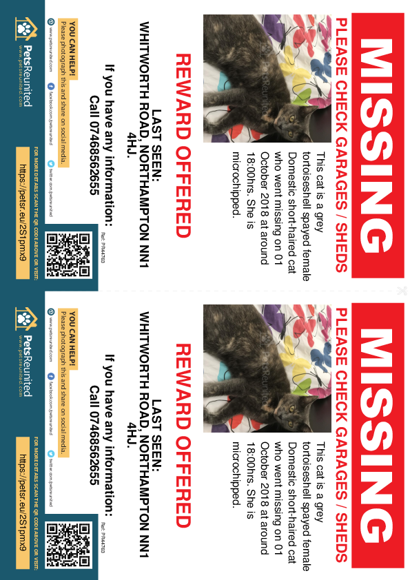 Lost pet flyers - Lost cat: Grey tortoiseshell cat [name witheld]