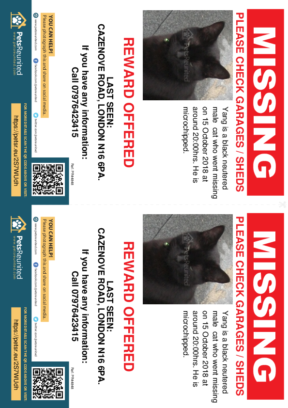 Lost pet flyers - Lost cat: Black cat called Yang