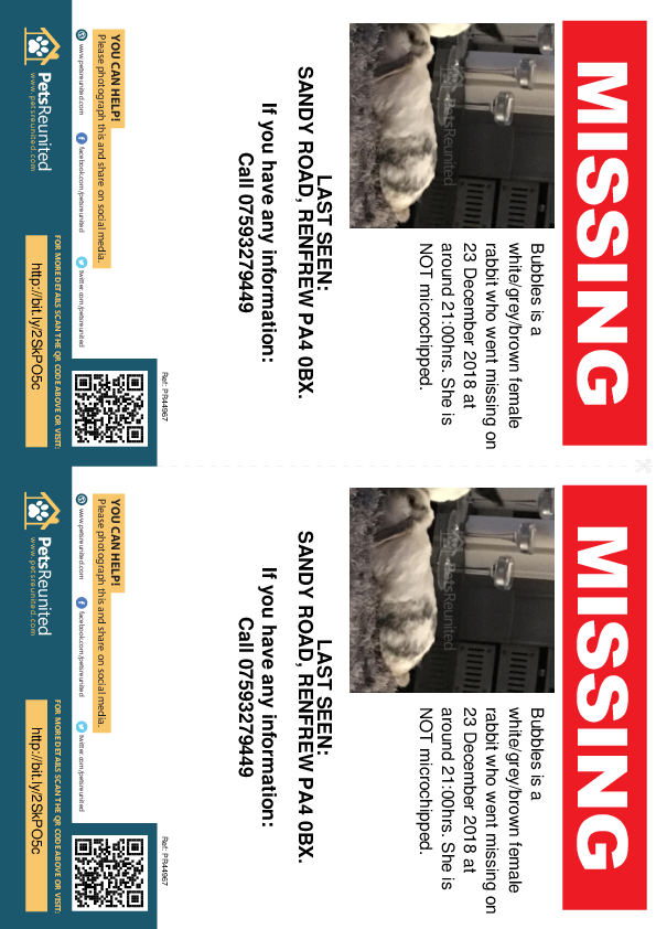 Lost pet flyers - Lost rabbit: White/grey/brown rabbit called Bubbles