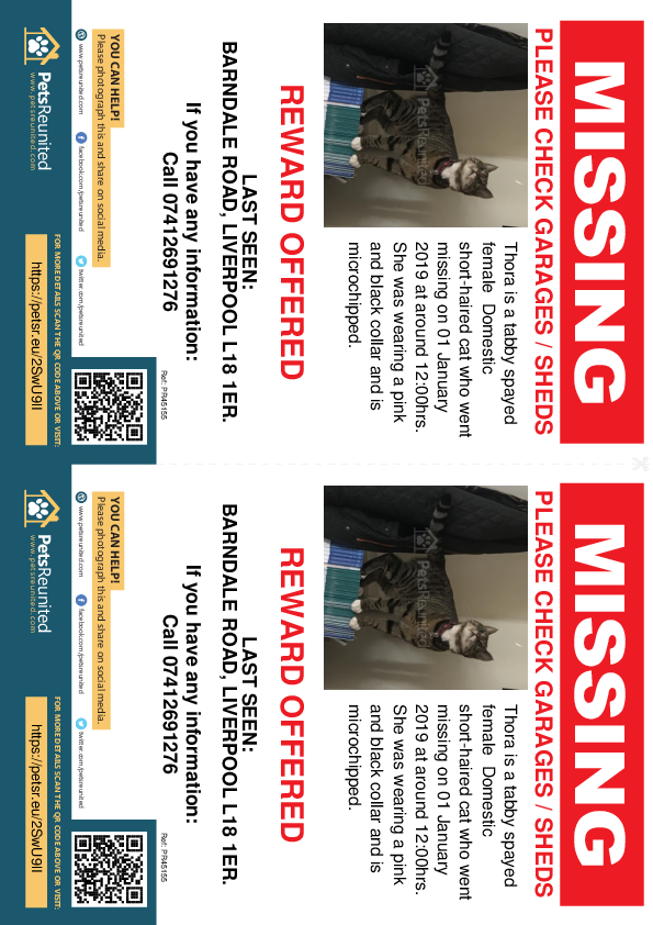 Lost pet flyers - Lost cat: Tabby cat called Thora