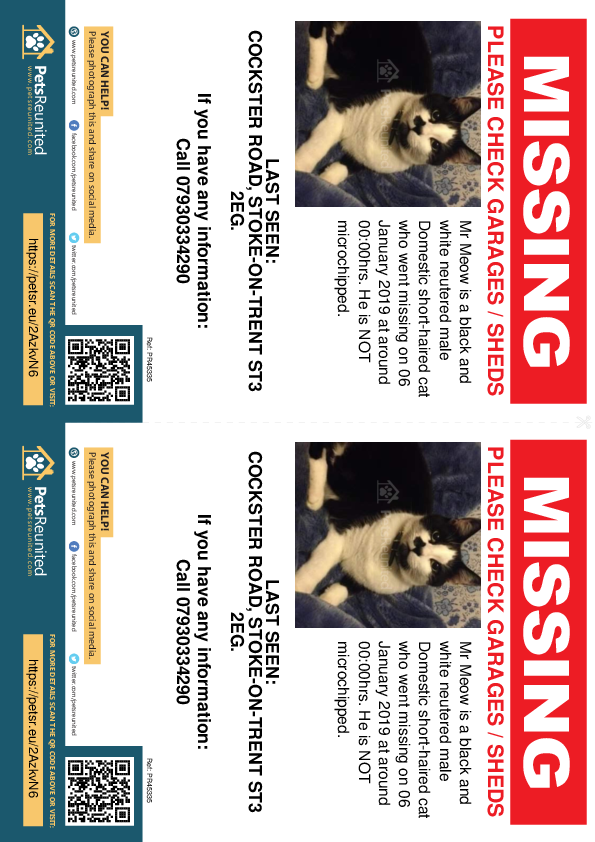 Lost pet flyers - Lost cat: Black and white cat called Mr Meow