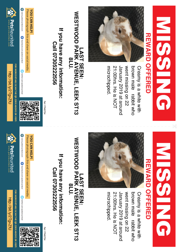 Lost pet flyers - Lost rabbit: White with Brown  rabbit called Creamy