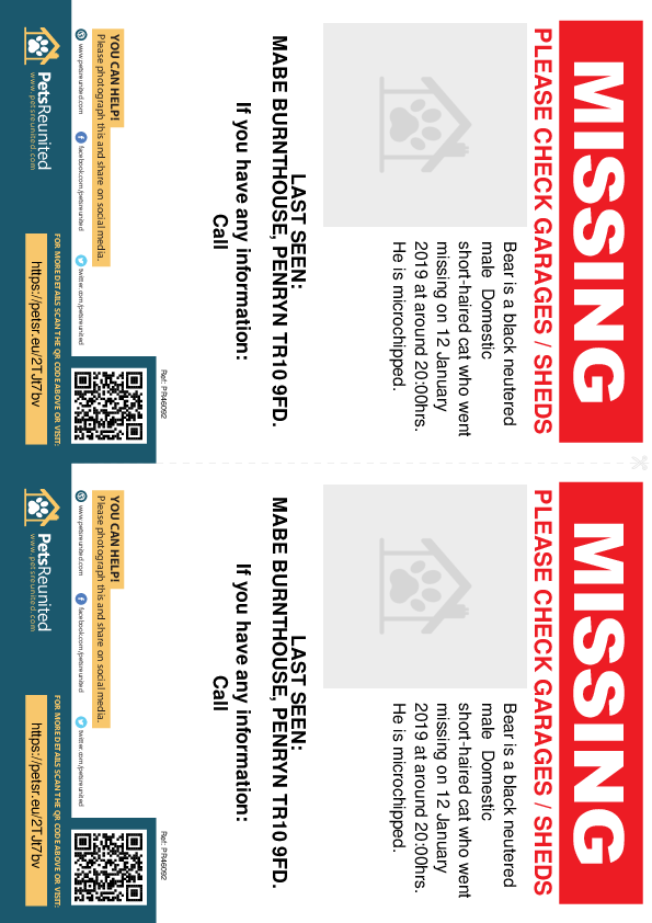 Lost pet flyers - Lost cat: Black cat called Bear