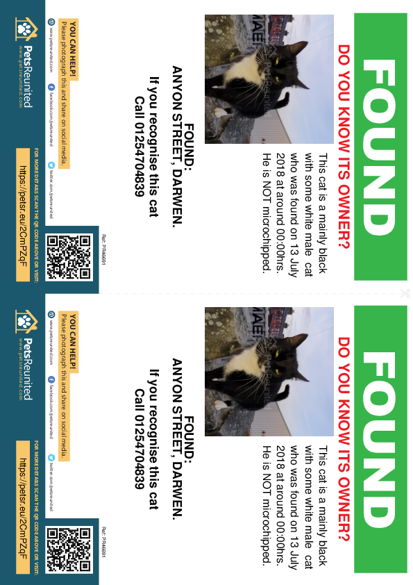 Found pet flyers - Found cat: Mainly black with some white cat