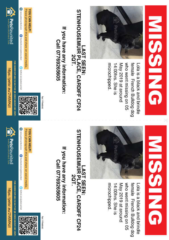 Lost pet flyers - Lost dog: Black and brindle French Bulldog dog called Lola