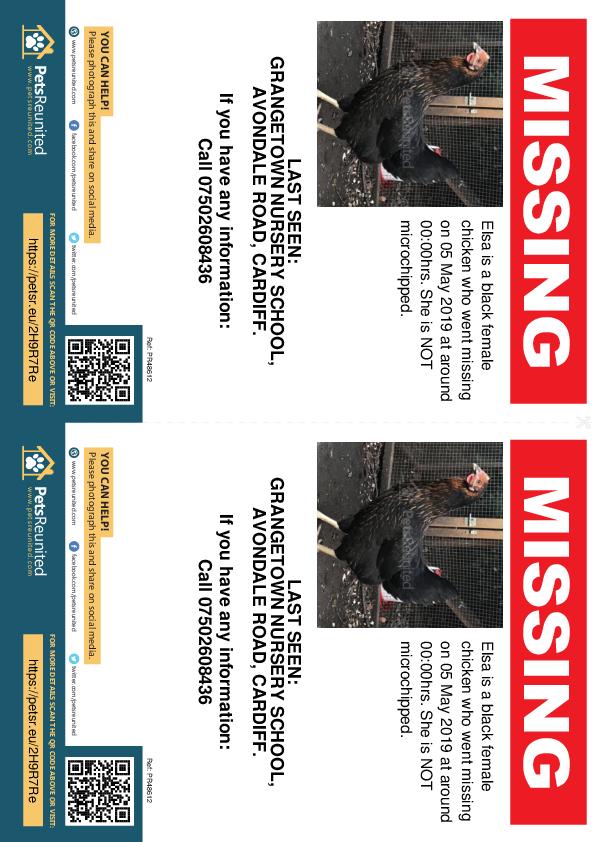 Lost pet flyers - Lost chicken: Black  chicken called Elsa