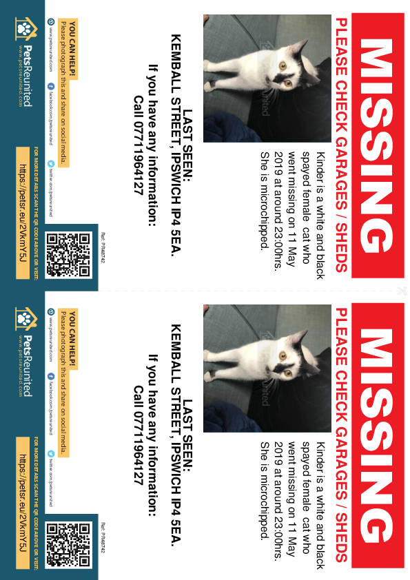 Lost pet flyers - Lost cat: White and black cat called Kinder