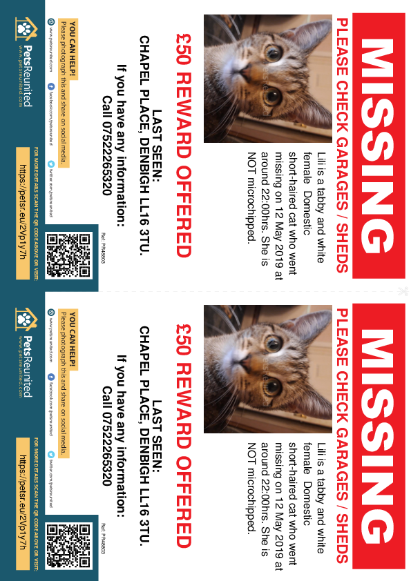 Lost pet flyers - Lost cat: Tabby and white cat called Lili