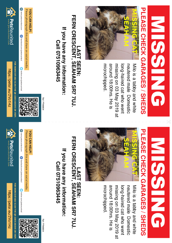 Lost pet flyers - Lost cat: Tabby and white cat called Milo