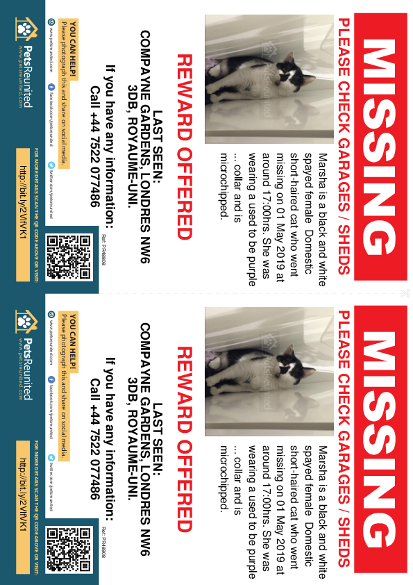 Lost pet flyers - Lost cat: Black and white cat called Marsha