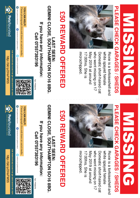 Lost pet flyers - Lost cat: Tortoiseshell and white cat called Roxie