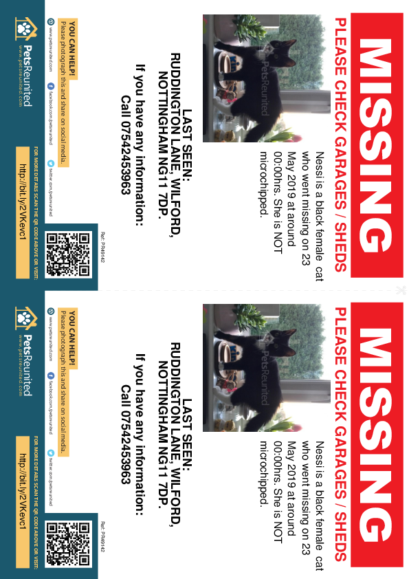Lost pet flyers - Lost cat: black cat called Nessi