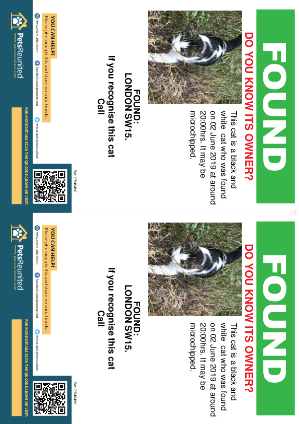 Found pet flyers - Found cat: Black and white cat