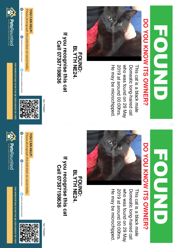 Found pet flyers - Found cat: Black cat