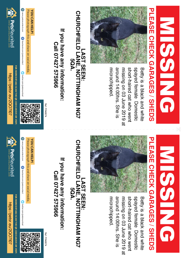 Lost pet flyers - Lost cat: Black and white cat called Betty