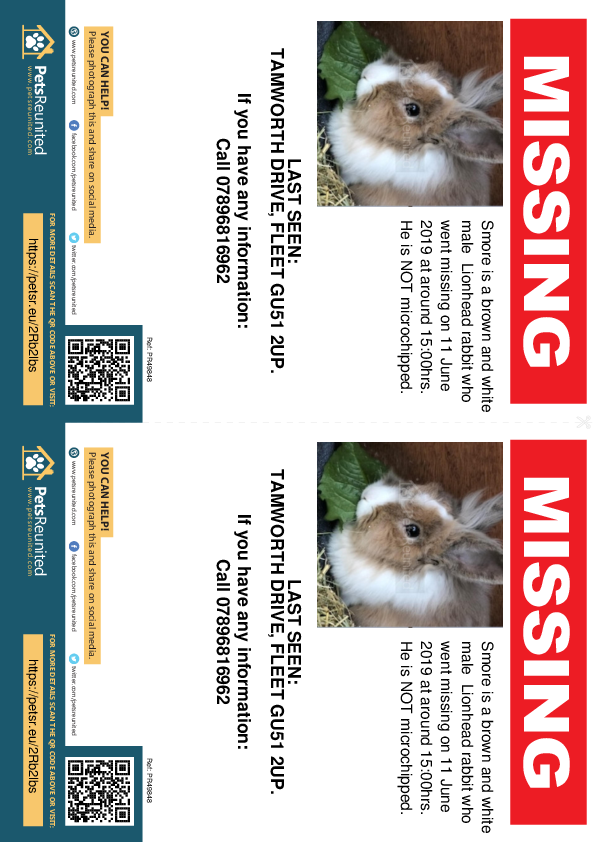 Lost pet flyers - Lost rabbit: Brown and white Lionhead rabbit called Smore