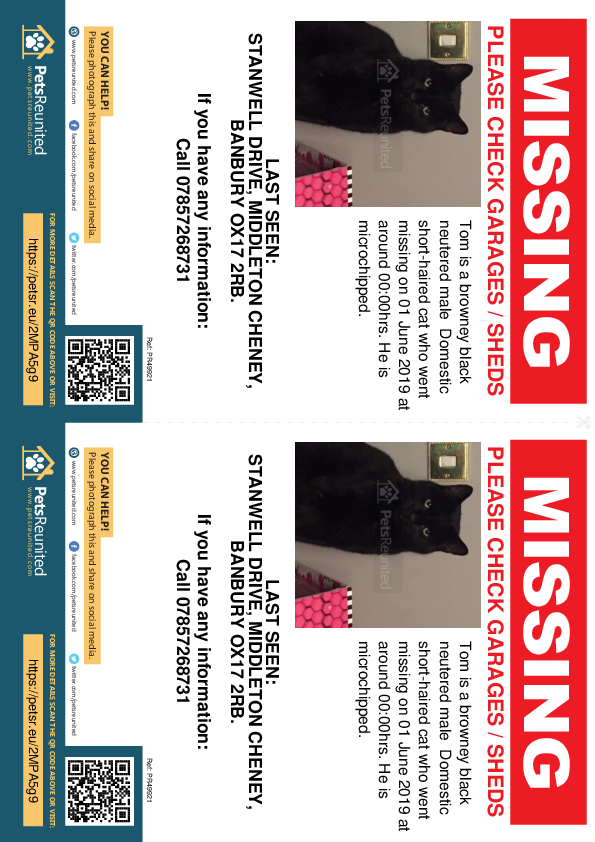 Lost pet flyers - Lost cat: Browney black cat called Tom