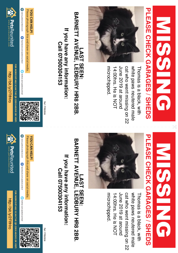 Lost pet flyers - Lost cat: Black, with white paws cat called Thomas