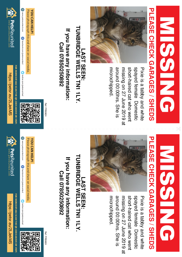 Lost pet flyers - Lost cat: Tabby and white cat called Pixie